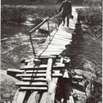 Precarious Path