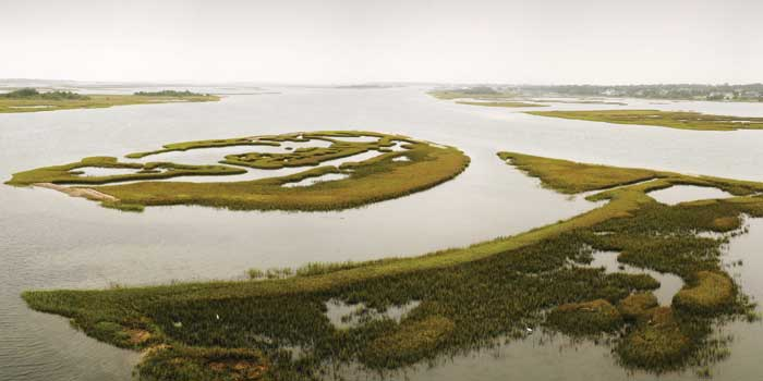 The-Bogue-Sound-wetlands
