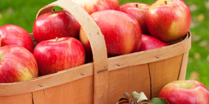 skyline apples