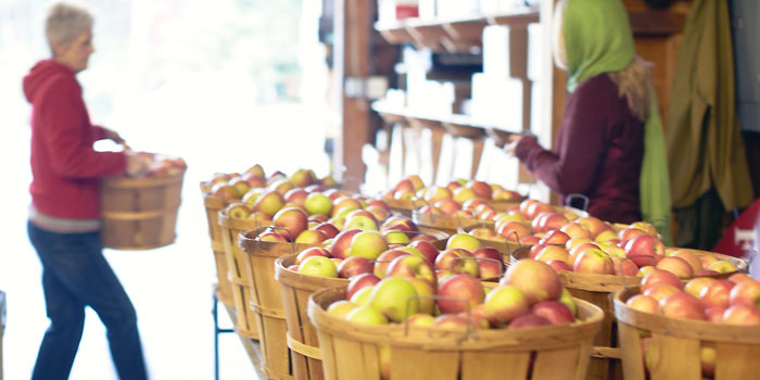 Mountain Fresh Orchards in Hendersonville North Carolina