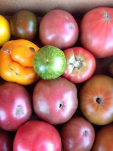 Local heirloom tomatoes in Wilmington, N.C.