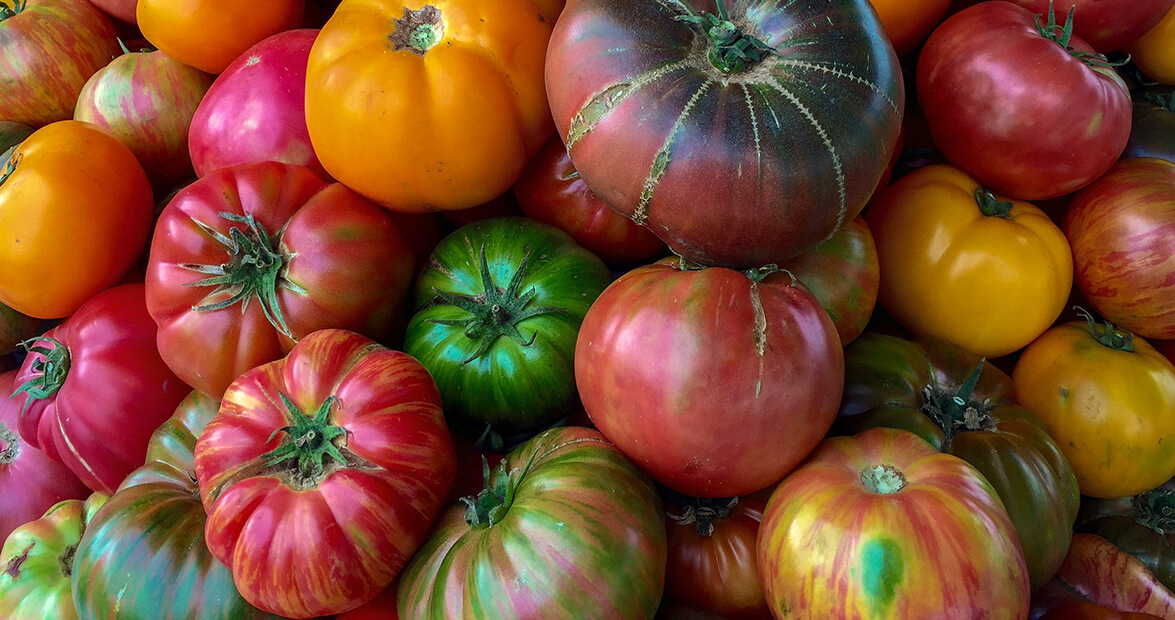 Why Heirloom Tomatoes Taste Better