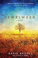Jewelweed by David Rhodes