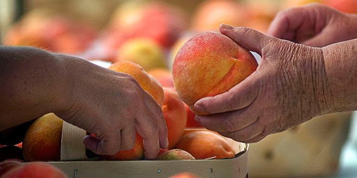 peach feature
