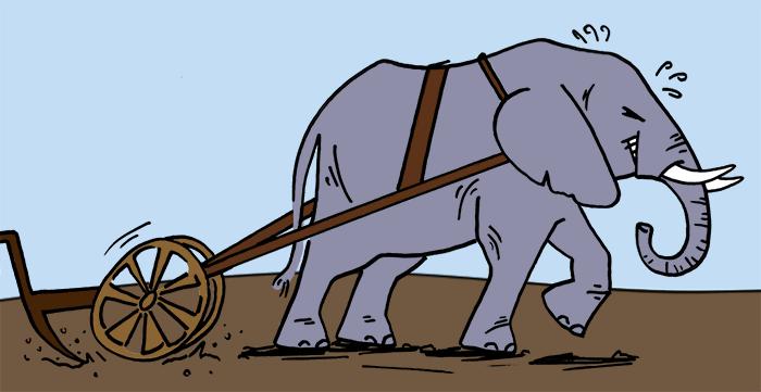 elephant_plow