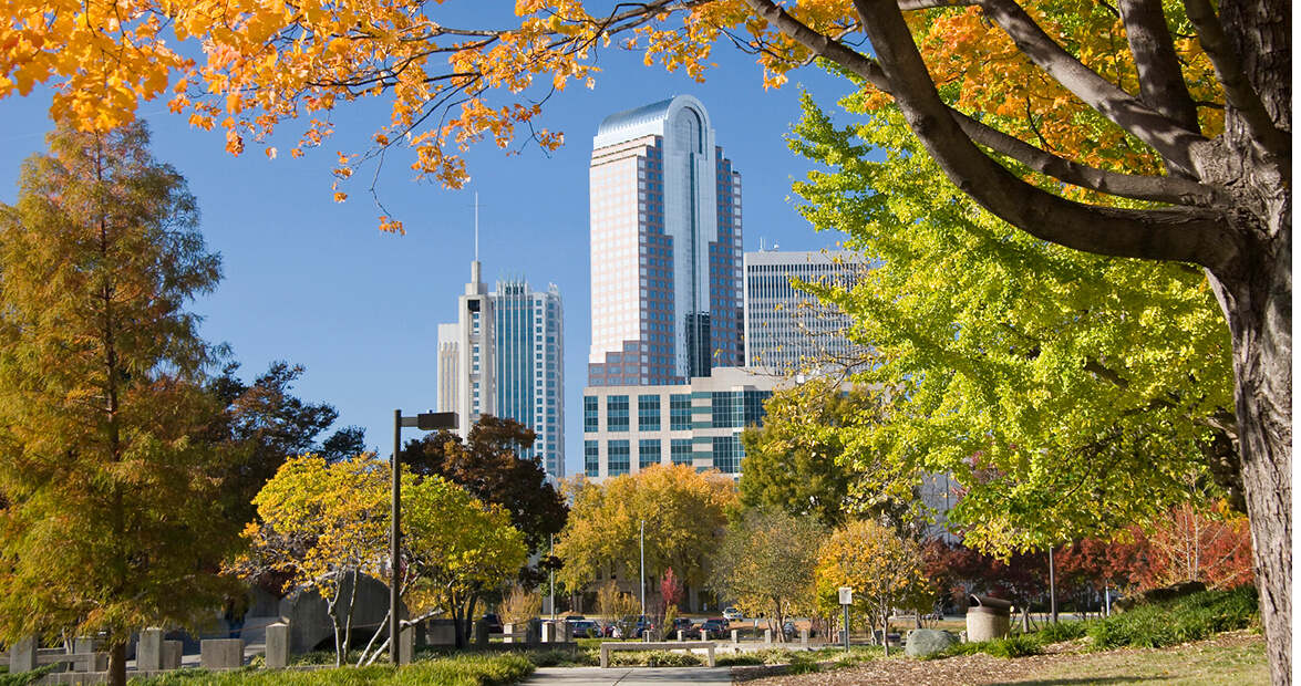 charlotte_fall_downtown