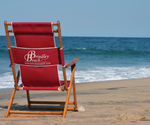 brindley-beach-image_300x250