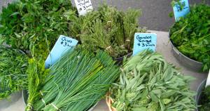 herb garden fair