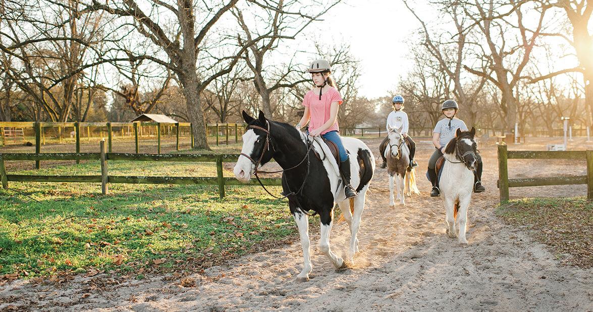 pinehurst-horses-feat-img