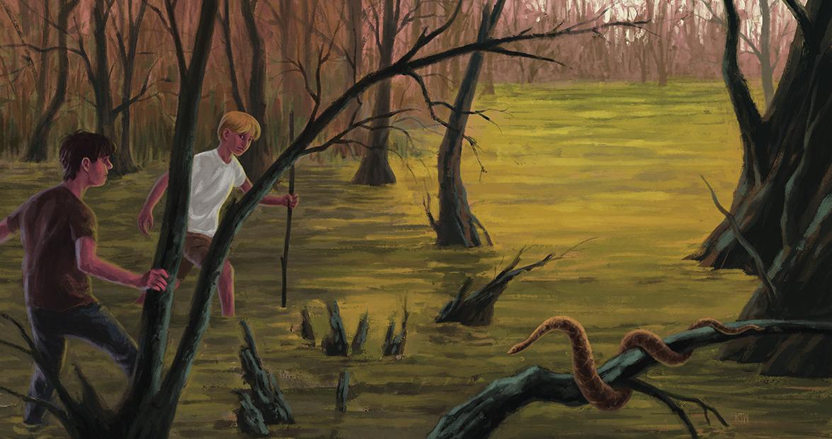 coharie swamp