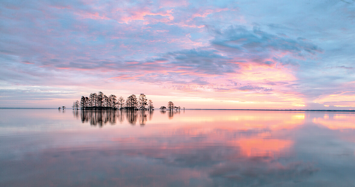 lake mattamuskeet feat img