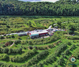 orchard-altapass