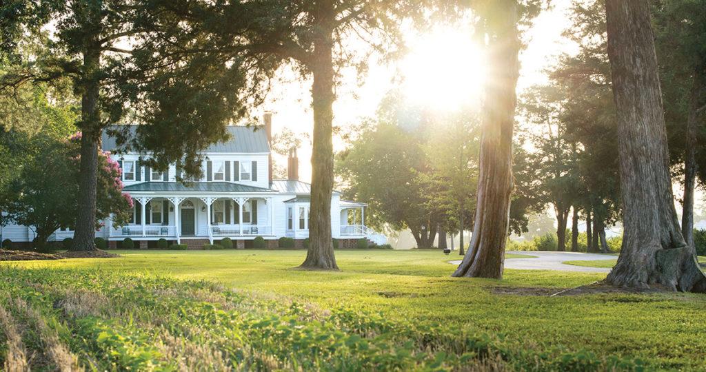 grimesland plantation feat img