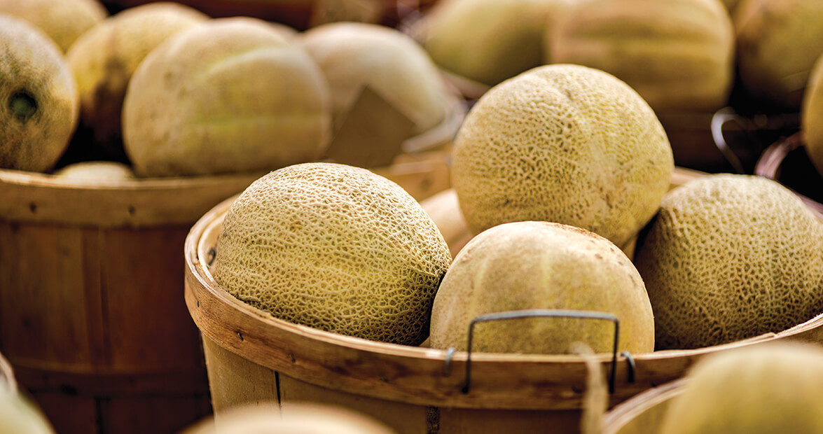 Come Summertime, Cantaloupes are Ridgeway's Royalty