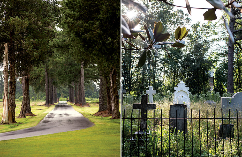 Photo Essay: The Restoration of Grimesland Plantation