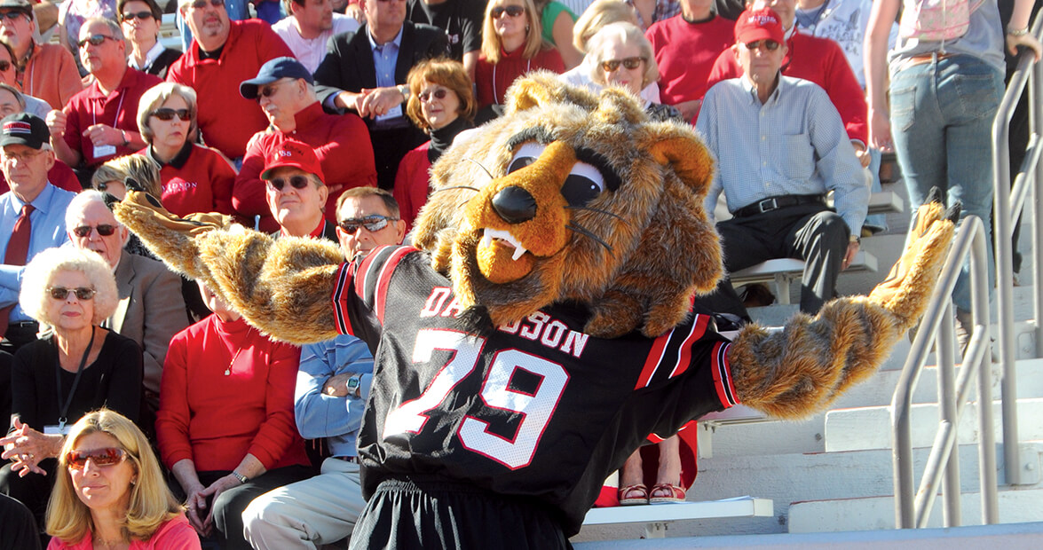 Davidson College's Mascot is Wild at Heart