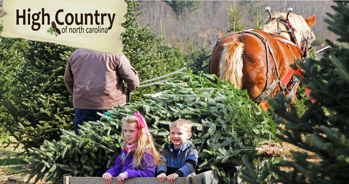 A High Country Giveaway