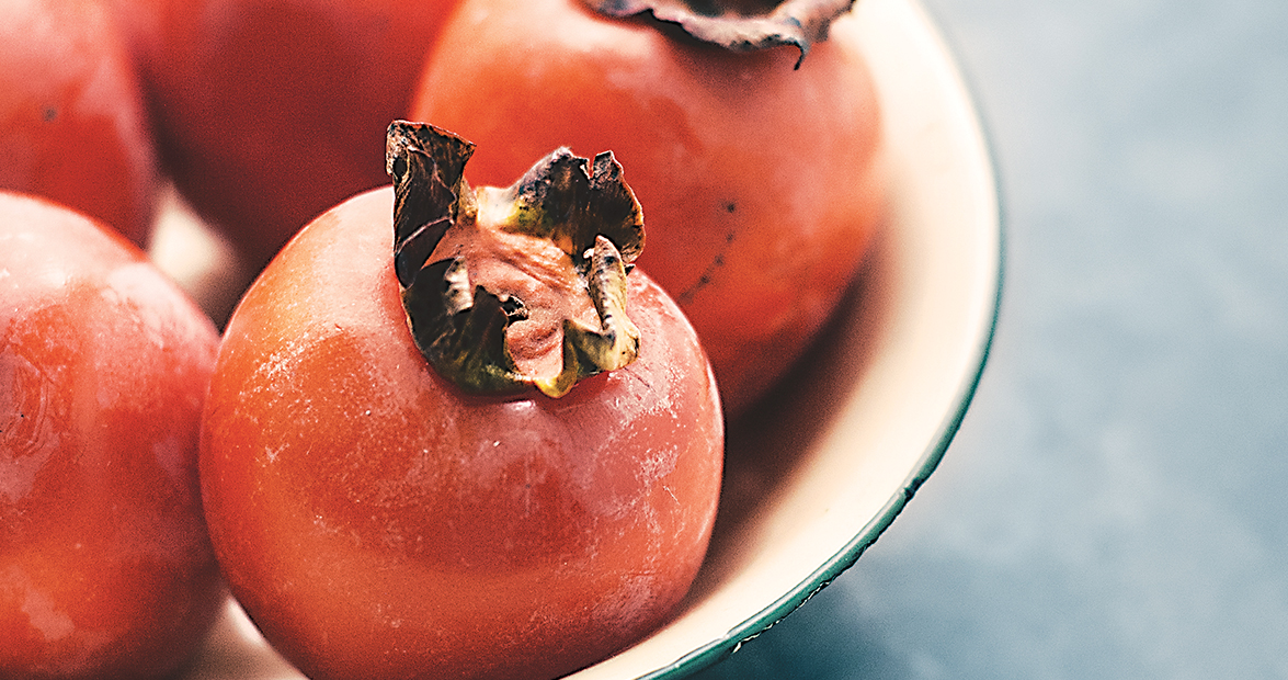 Persimmons are North Carolina's First Frost Fruits