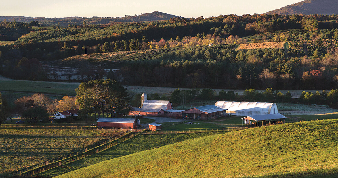 A New Beginning for Brush Creek Farm in Alleghany County