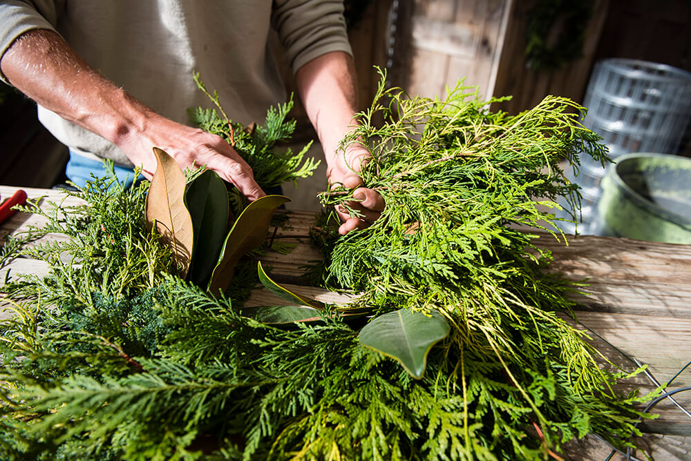 DIY: Make a Wreath Using Greenery from Your Own Backyard