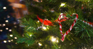 This Weekend in North Carolina: December 23-25