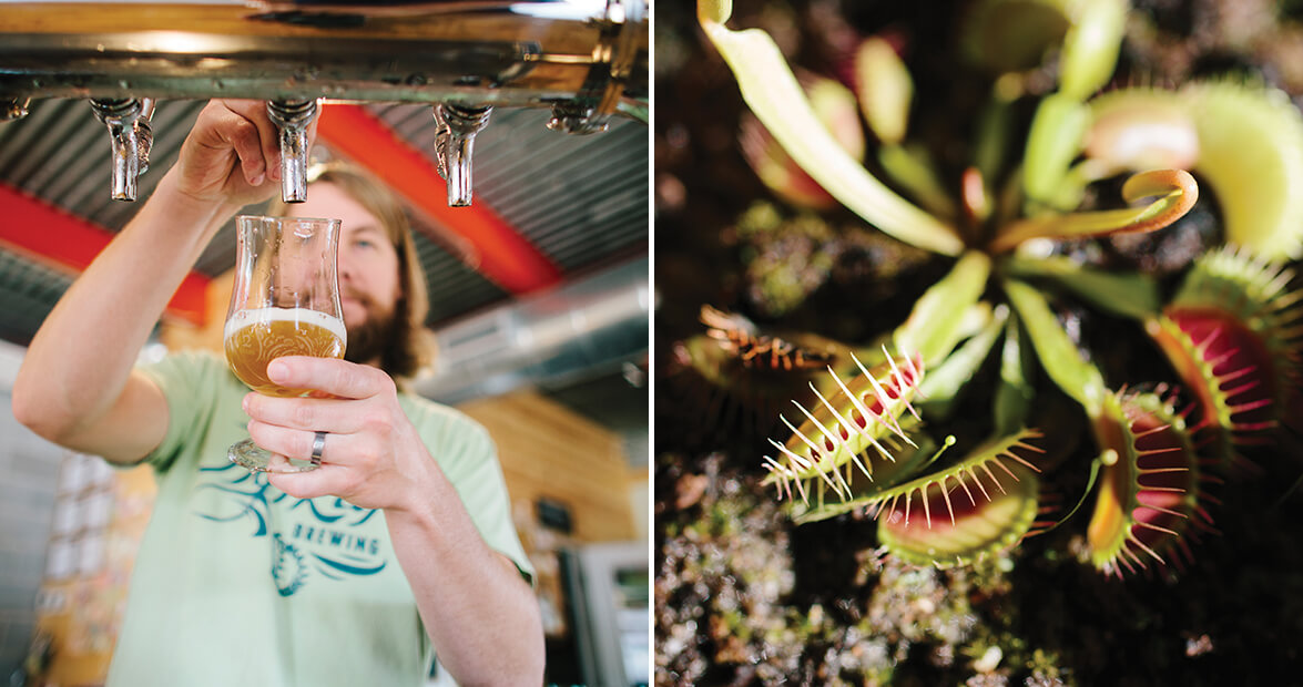Flytrap Brewing in Wilmington Celebrates Coastal North Carolina