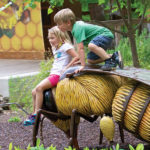 Come Face to Face with Wildlife in Asheboro, the Zoo City of North Carolina