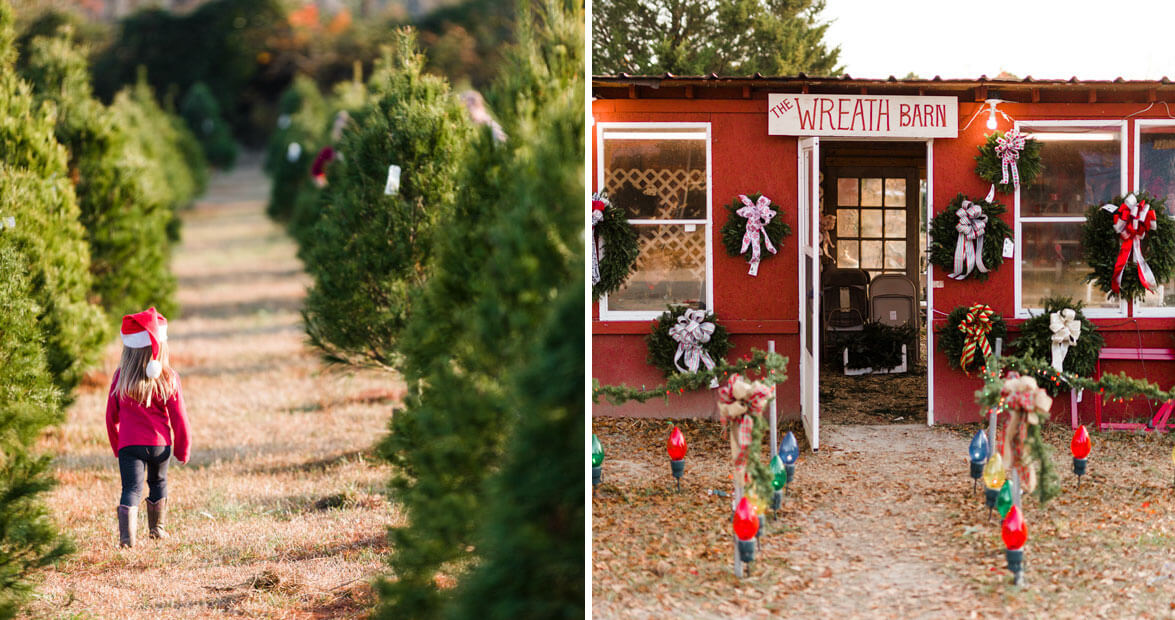 Millers Christmas Tree Farm.Justice Farms In Jacksonville Our State Magazine