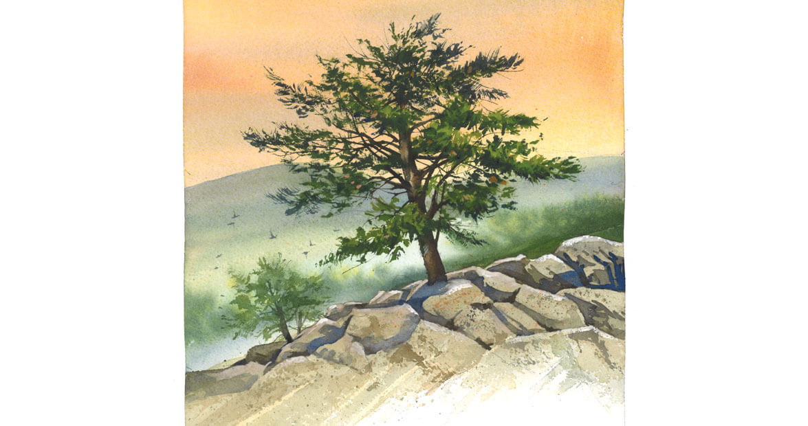 Living Cliffside